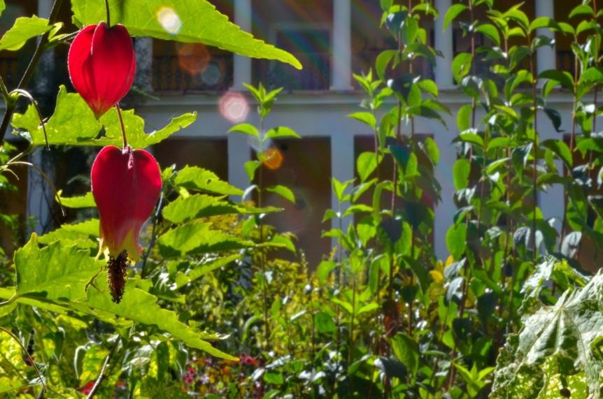 Garten vor dem Hauptgebaeude